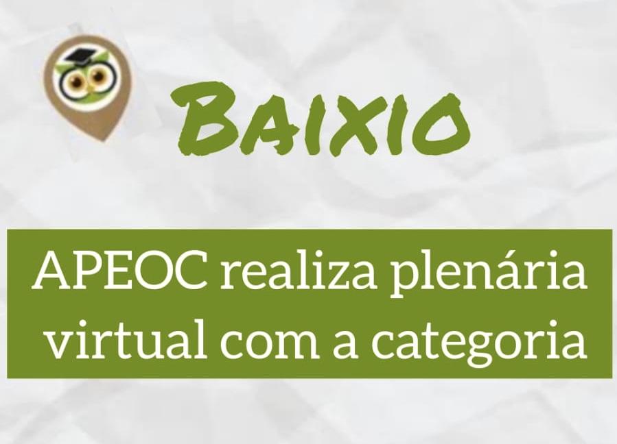 BAIXIO: APEOC REALIZA PLENÁRIA VIRTUAL COM A CATEGORIA